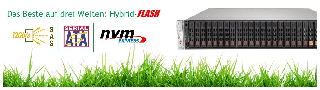 Hybrid-Flash Storage Server
