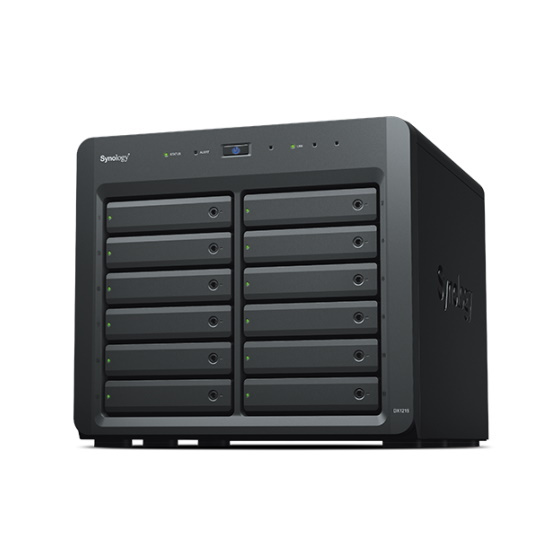 Synology DX1215 12-Bay Expansion Gehäuse